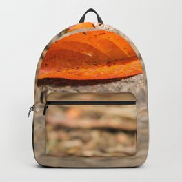 Orange leaf lying on the street Backpack