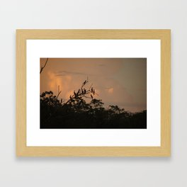 Sunrise On The Amazon River Peru Framed Art Print