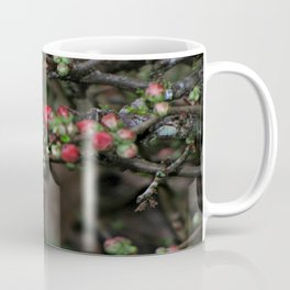 Japanese Red Quince Coffee Mug