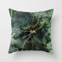 Watercolor Crustacean, Yellowline Arrow Crab 01, St John, USVI, Spider of the Deep Throw Pillow