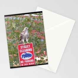 No Parking Hawk 3 Stationery Cards