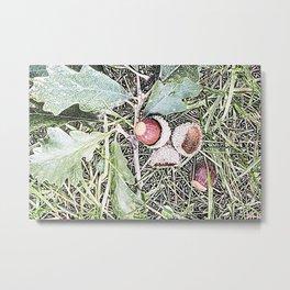 Autumn Acorns 1 Metal Print