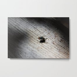 Fresh Rainfall Metal Print