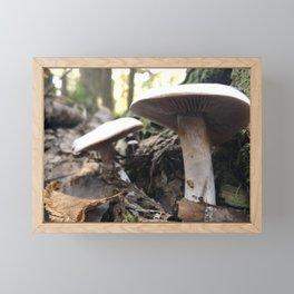 Pair of mushrooms under the Vermont canopy Framed Mini Art Print