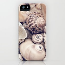 Vintage  Sea Shell Collection Coastal Style iPhone Case