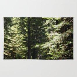 Humboldt State Park Road Rug