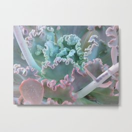 Succulent in the Sand Metal Print