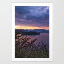 Soft Island Art Print