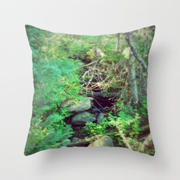 Stream of Living Water Throw Pillow