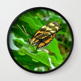 Profile of a Butterfly. Wall Clock