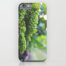 Drink More Wine in Napa iPhone 6s Slim Case