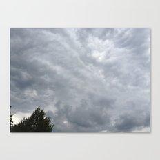 cool grey Canvas Print