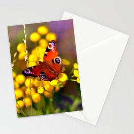 Autumnal Blossoms and Peacock Butterfly Stationery Cards
