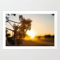 Malabad Sunset 1 Art Print