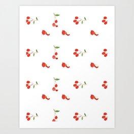 Rambutan - Singapore Tropical Fruits Series Art Print