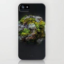The Moss Globe iPhone Case