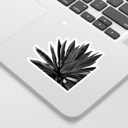 Agave Cactus Black & White Sticker