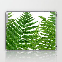 Summer Ferns Laptop & iPad Skin