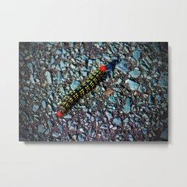 Azalea Caterpillar Metal Print