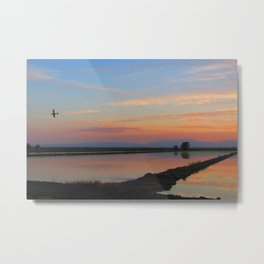 Such Great Heights Metal Print