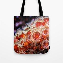 Strawberry Anemone Tote Bag
