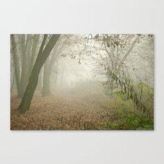 FOGGY WALK Canvas Print