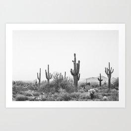 DESERT / Scottsdale, Arizona Art Print