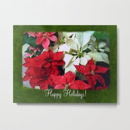 Mixed color Poinsettias 1 Happy Holidays P1F1 Metal Print