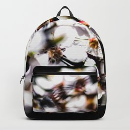 Mix Of Sunlit Japanese Apricot Flowers Against The Black Background Backpack