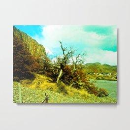 Dries the nature. Metal Print