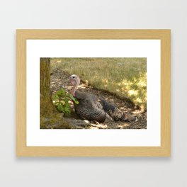 Turkey Framed Art Print