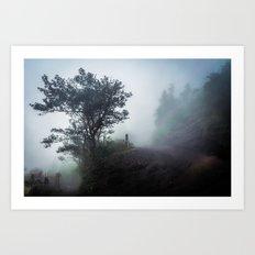 Foggy Pacaya Art Print