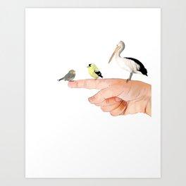 Small Birds Perching on a Hand Art Print