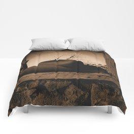 Windows 1895 Comforters