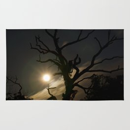 Autumn Moon Rug