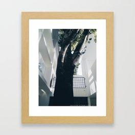 Curutchet Framed Art Print