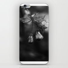 One Point Two iPhone & iPod Skin