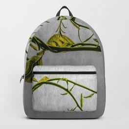 Magic Vine Backpack