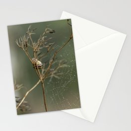 Snail and the cobweb  Stationery Cards