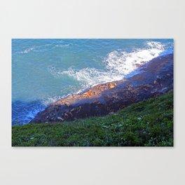 Sea Lion Caves Canvas Print