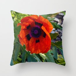 Summer reds Throw Pillow