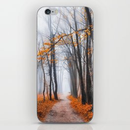 Misty road iPhone Skin