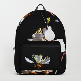 Small Branch Of White Japanese Apricot Blossoms Against The Black Background Backpack