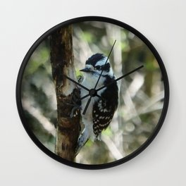 Downy Woodpecker Wall Clock