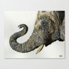 Elephant Cyril Canvas Print