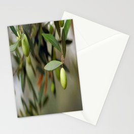 Olives On A Branch Stationery Cards