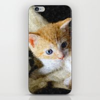 kitten iPhone & iPod Skins featuring Kitten  by Christine baessler