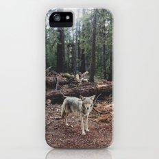 Injured Coyote Slim Case iPhone (5, 5s)