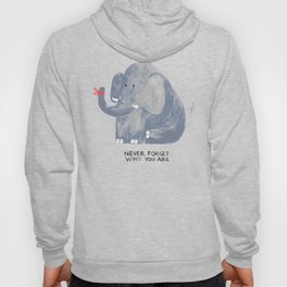 Elephant never forgets Hoody