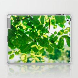 Backlit Fresh Green Tree Leaves In Summer, Tree Leaf, Intense Vivid Green, Nature In Summer, Macro Laptop & iPad Skin
